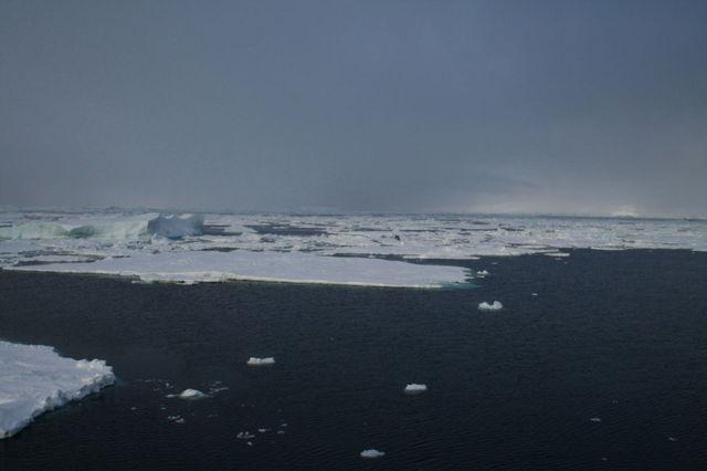 Antarctica_1d