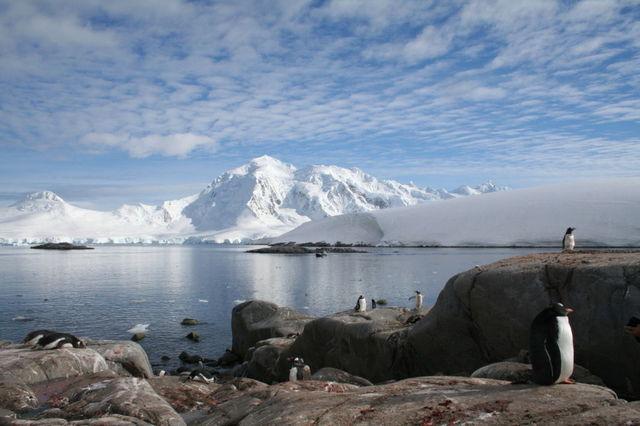 Antarctica_1h