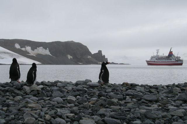 Antarctica_1t