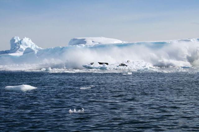 Antarctica_2v